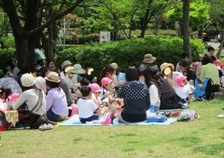 oyakoennsoku.jpg